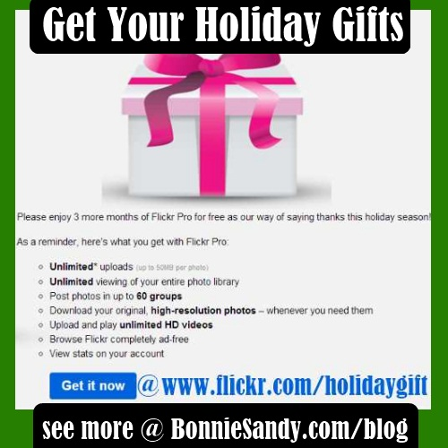 flickr pro holiday gift